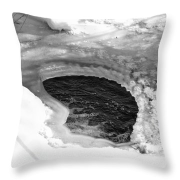 Water And Ice Throw Pillow by Michael Goyberg
