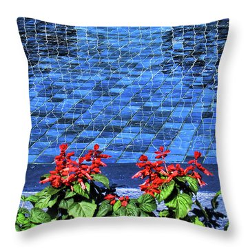 Water And Mirrors Throw Pillow