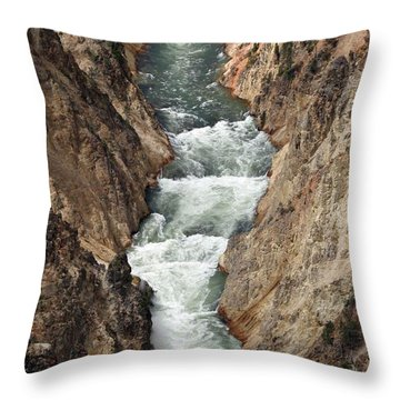 Throw Pillow featuring the photograph Water And Rock by Living Color Photography Lorraine Lynch