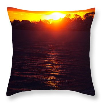 Water Dance Throw Pillow by Cindy Lee Longhini