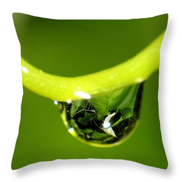 Water Droplet On Grapevine Throw Pillow