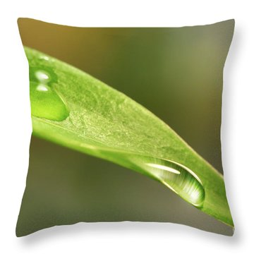 Water Droplets On A Lily Leaf Throw Pillow by Sandra Cunningham