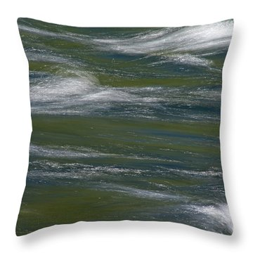 Water Impression 2 Throw Pillow by Catherine Lau