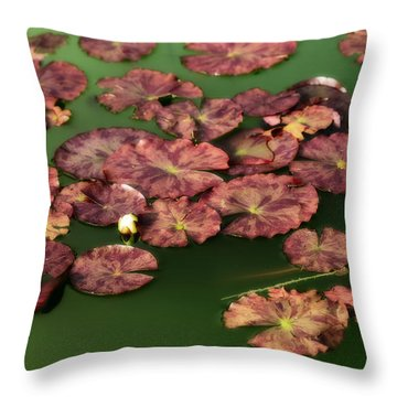 Water Lilies Throw Pillow by Bonnie Bruno