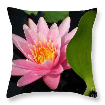 Water Lily 2 Throw Pillow by Eva Kaufman