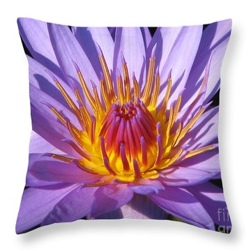 Water Lily 6 Throw Pillow by Eva Kaufman