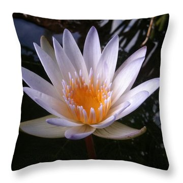 Throw Pillow featuring the photograph Water Lily by Carol Sweetwood