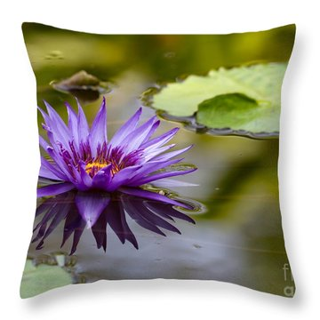 Water Lily Kissing The Water Throw Pillow by Sabrina L Ryan
