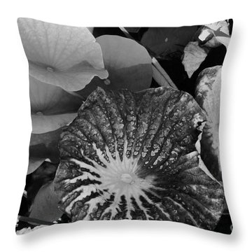 Throw Pillow featuring the photograph Water Lily Leaf by Jasna Gopic