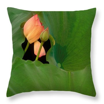 Water Lily Throw Pillow by Mark Greenberg