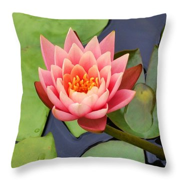 Water Lily Throw Pillow by Mary Zeman