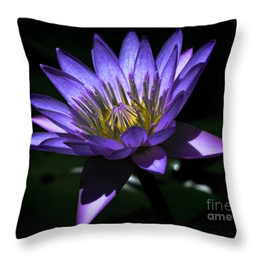 Water Lily  Reveal Throw Pillow by Karen Lewis