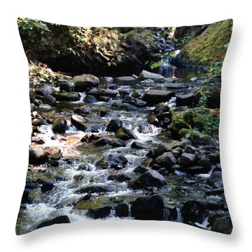 Water Over Rocks Throw Pillow by Maureen E Ritter