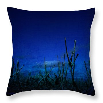 Water World Throw Pillow by Empty Wall