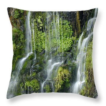 Waterfall At Columbia River Washington Throw Pillow by Ted J Clutter and Photo Researchers