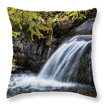 Throw Pillow featuring the photograph Waterfall by Hugh Smith