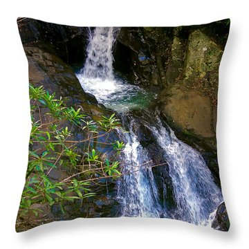 Waterfall In The Currumbin Valley Throw Pillow