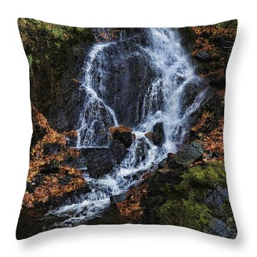 Waterfall Throw Pillow by Lawrence Christopher