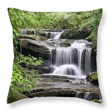Waterfall Near Mabbitt Spring Throw Pillow