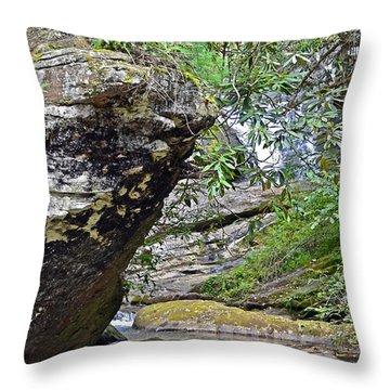 Waterfall Rock Throw Pillow by Susan Leggett
