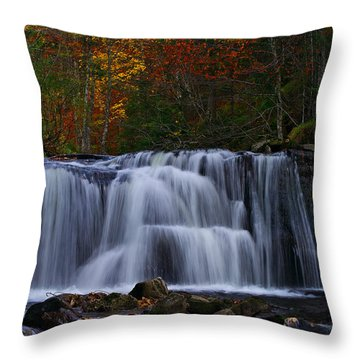Waterfall Svitan Throw Pillow