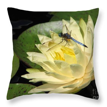 Waterlily With Dragonfly Throw Pillow by Eva Kaufman