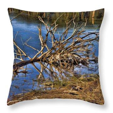 Waterlogged Tree Throw Pillow by Douglas Barnard