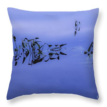 Throw Pillow featuring the photograph Waters Edge by Alana Ranney