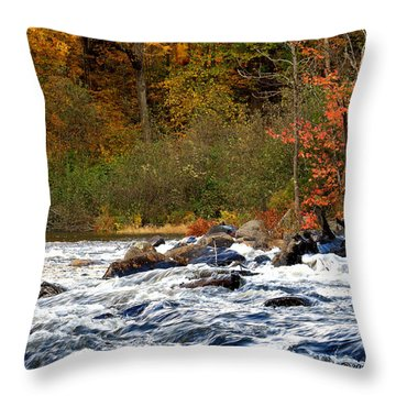 Waters Of Algonquin Throw Pillow