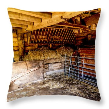 Watersfield Stable Throw Pillow by Dawn OConnor