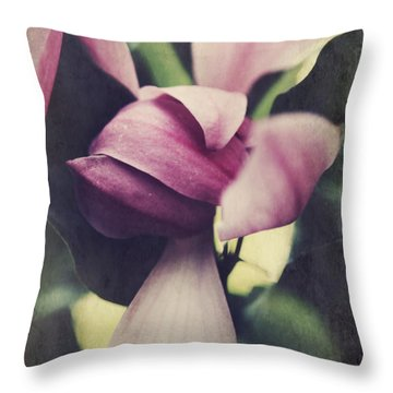 We Knew What Had To Be Throw Pillow by Laurie Search