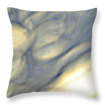 weather report II Throw Pillow by Diane montana Jansson