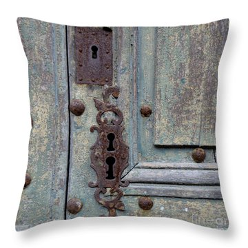 Weathered Throw Pillow by Lainie Wrightson