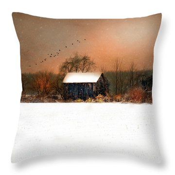 Throw Pillow featuring the photograph Weathered by Mary Timman