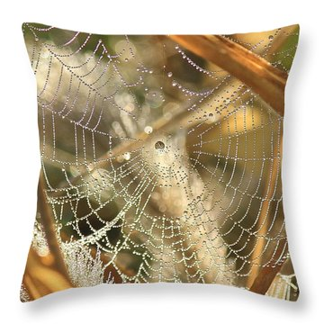 Web Of Jewels Throw Pillow by Penny Meyers