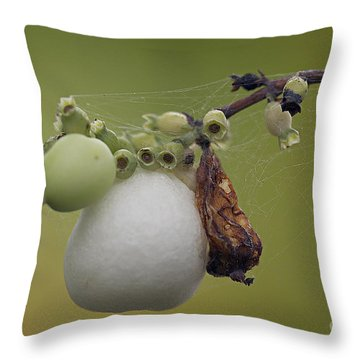 Webbed Berry Throw Pillow by Eunice Gibb