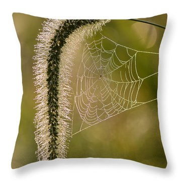 Throw Pillow featuring the photograph Webbed Tail by JD Grimes