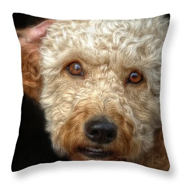 Webster At The Bar Throw Pillow