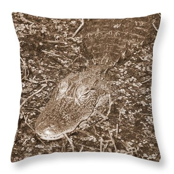 Welcome To The Swamp - Sepia Throw Pillow