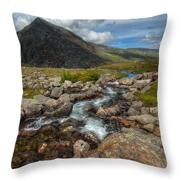 Welsh Valley Throw Pillow by Adrian Evans