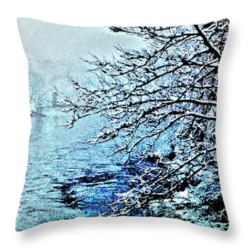 West River Snow Throw Pillow