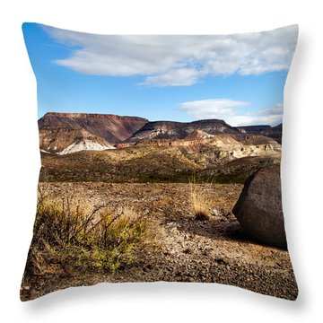 West Texas Throw Pillow