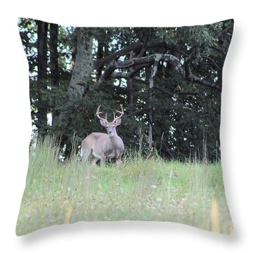 West Virginia Native Throw Pillow