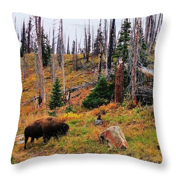 Western Icon Throw Pillow by Benjamin Yeager