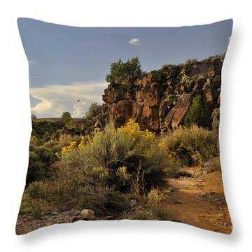 Westward Across The Mesa Throw Pillow