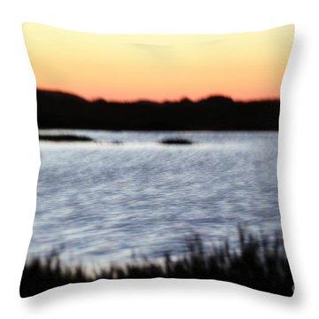 Throw Pillow featuring the photograph Wetland by Henrik Lehnerer