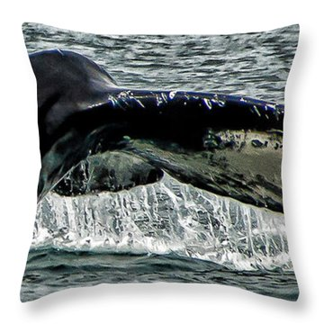 Whale Tail Throw Pillow by Jon Berghoff