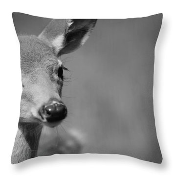 What A Face Throw Pillow by Karol Livote