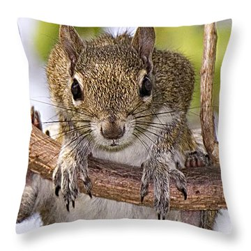 Throw Pillow featuring the photograph What A Predicament This Is by Anne Rodkin