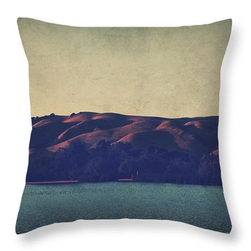 What The Shadows Hide Throw Pillow by Laurie Search